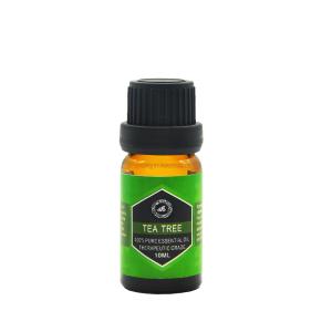 Massage use therapeutic aromatherapy diffuser tea tree essential oil
