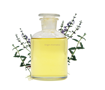 pharmaceutical Nepeta cataria oil