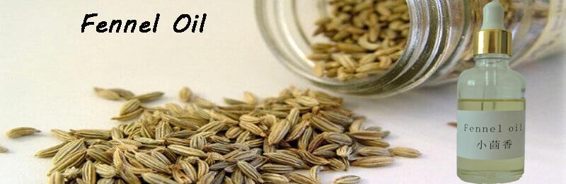 fennel-essential-7676ls.jpg