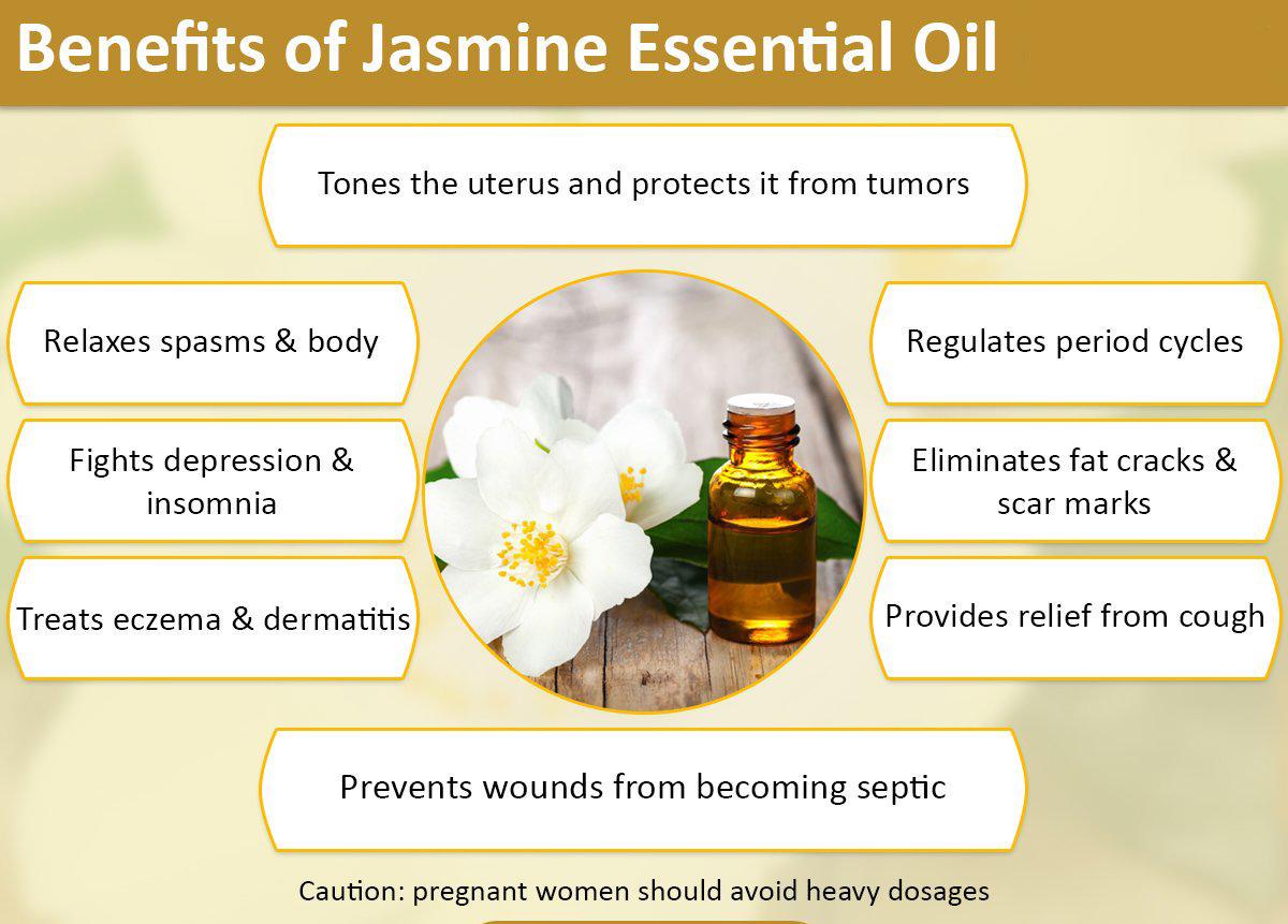 jasmine-info.jpg